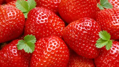 Photo of Health benefits for strawberries 5 why strawberries are good for you